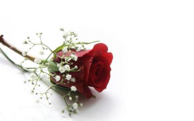 Herzliche Gratulation zur Hochzeit